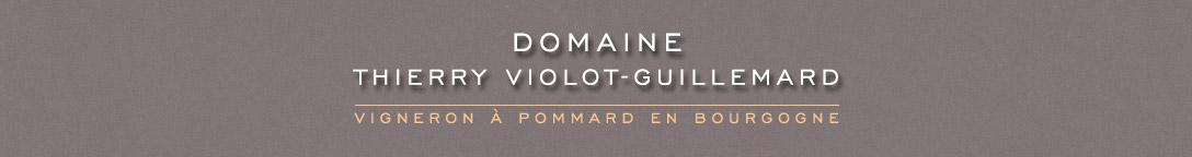 Domaine Thierry Violot-Guillemard | Vigneron à Pommard en Bourgogne